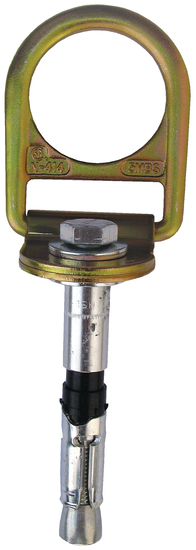 Protecta Pro Concrete D-ring Anchor with Bolt